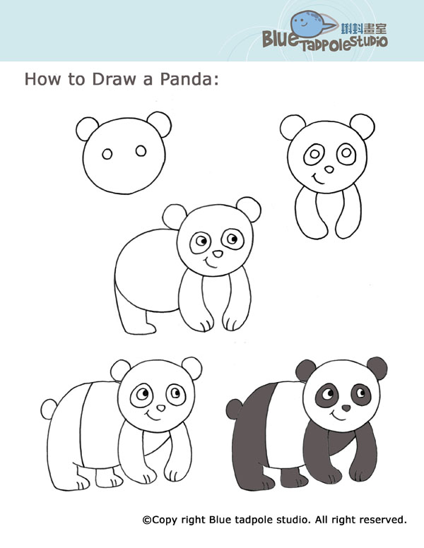 How to draw a cute baby panda - photo#10